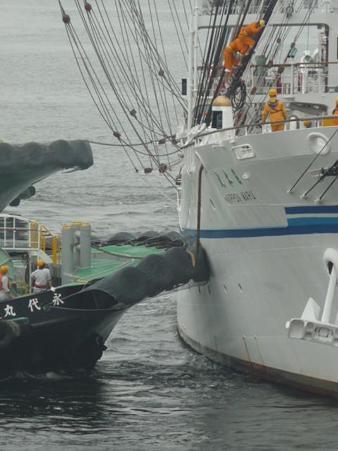 090722-日本丸出航 (48)