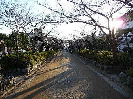 101210-段葛 (5)