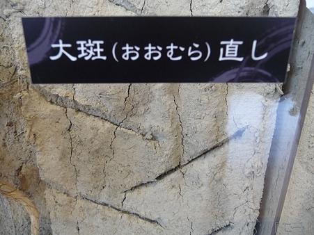 110417-姫路城 (96)