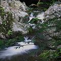 写真: 桃源郷-滝2