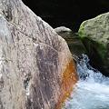 写真: 20110627_123114_raw