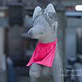 Photos: 稲荷神社