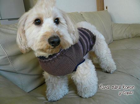 くーかいのための手編みセーター 2