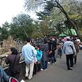 Photos: 今日の八木山動物園は超満員です★