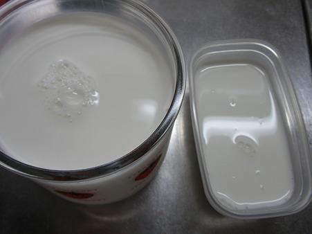 カスピ海ヨーグルト (3)