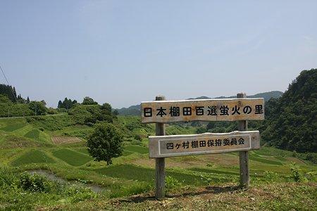 2009.07.06 四ヶ村 蛍火の里(棚田)