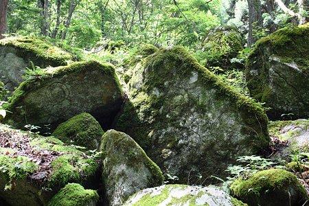 2009.08.12 遠野 自然石へ五百羅漢-1