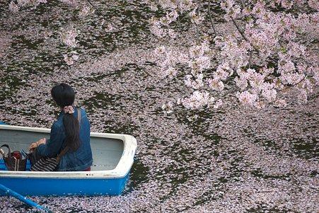 2011.04.11 皇居 北の丸公園 千鳥ヶ淵-8