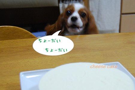 チーズケーキ 食べる~