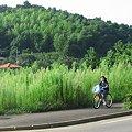 Photos: 2007_0819_A540_0047