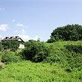 Photos: みかん山の晩夏:2007_0908_0003