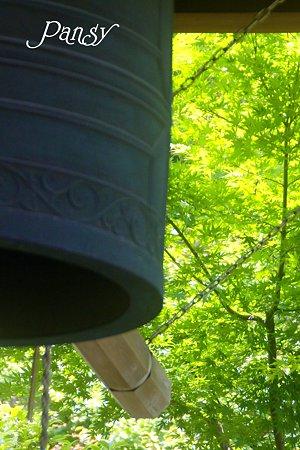 緑の季節の梵鐘・・