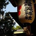 Photos: 初秋の上野さんぽ~8