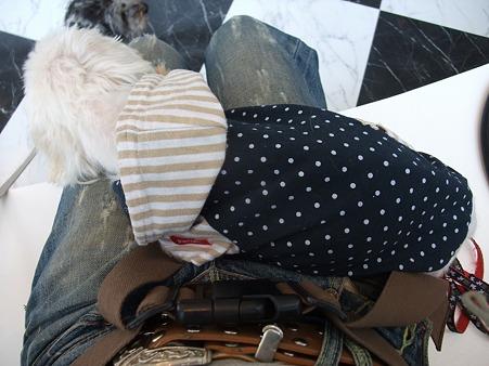 初めてひざの上で寝た!