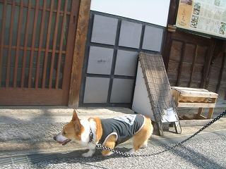 2009_0607錦帯橋及び港公園及び0103
