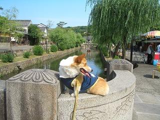 2009_0607錦帯橋及び港公園及び0107