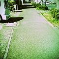 写真: IMG_0145
