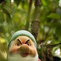 Photos: 「森を汚すのは誰だ!」