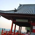 写真: 海を見下ろす大宝山・千光寺の本堂