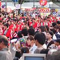 やっさ踊り2009、人出もピーク