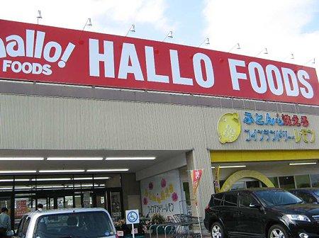hallo foods kani-210524-4