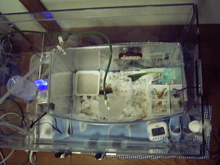 改良酸素室俯瞰
