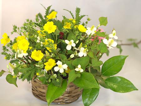 野の花の生け花01