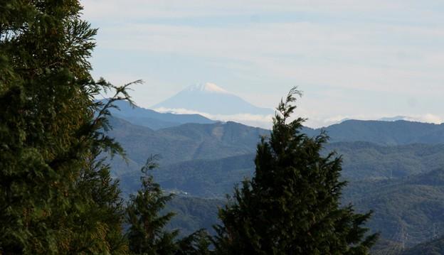 富幕山へ今年☆トミー77回登頂