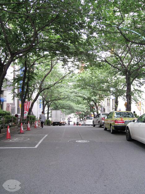 サクラブ地名:渋谷(桜丘町1)