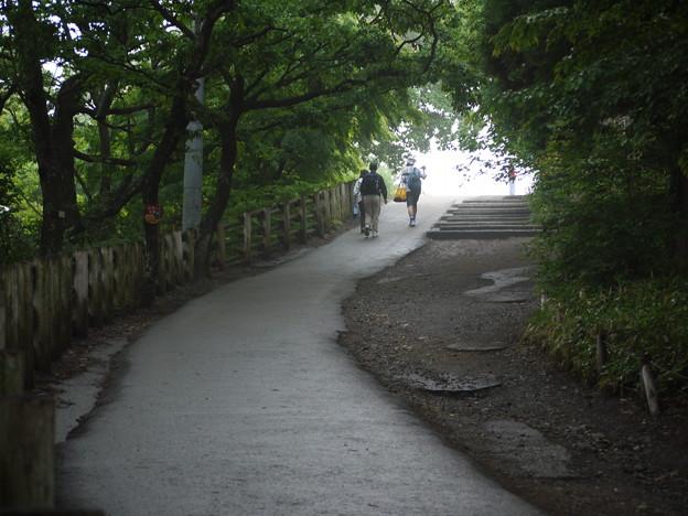 高尾山 山頂への道