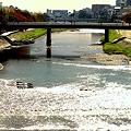 秋の日の鴨川