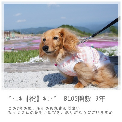 20120613 BLOG開設【祝】3年