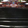Photos: 0914日枝神社 (6)