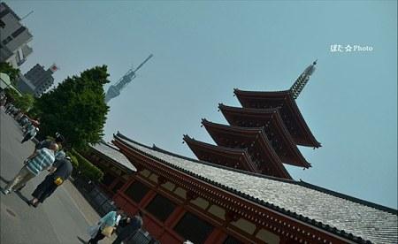 浅草寺三社祭2011