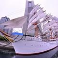 魚眼 もうすぐ完成。。総帆展帆 ・・横浜開港記念日