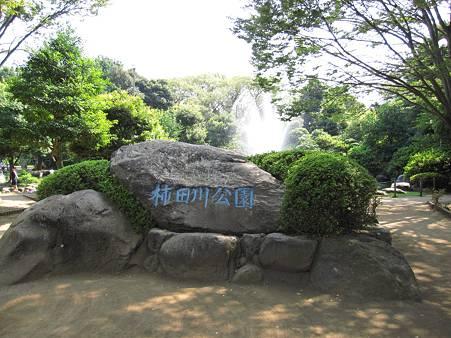 柿田川公園01