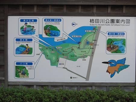 柿田川公園02