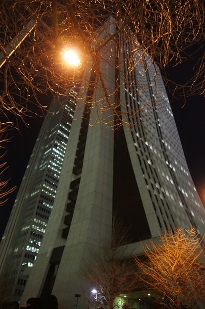 新宿高層街の夜DSC00112
