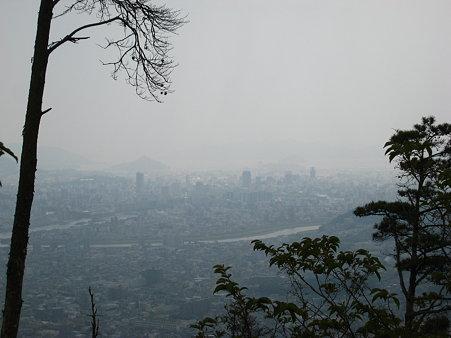 山頂近くから望む広島湾