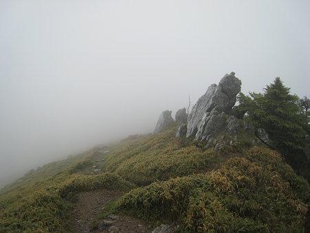 剣山からジロウギュウへの従走路