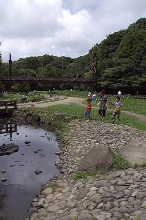 泉の森 02