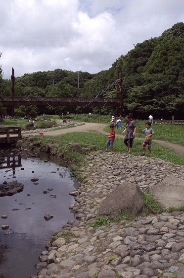 写真: 泉の森 02