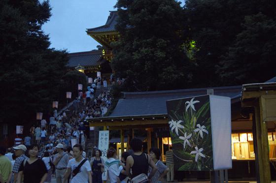 写真: ぼんぼり祭り 01