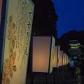 写真: ぼんぼり祭り 04