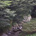 写真: 阿夫利神社 02
