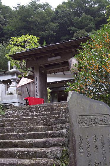 写真: 阿夫利神社 05